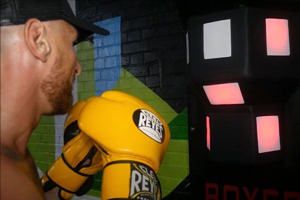 Man prepares to strike ESA Boxer performance trainer with lights on